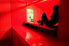 That Side Where Real Is_Red Gloss One String_8March2013_creature_web_R.jpg