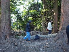 ikeda2011013_R.JPG